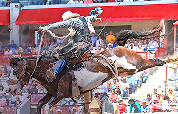 Rodeo Events Management